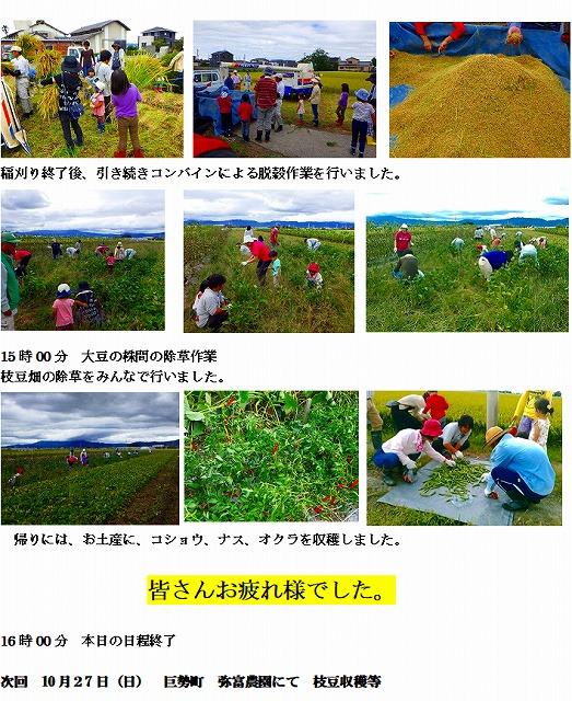 元年9月 稲刈り 2