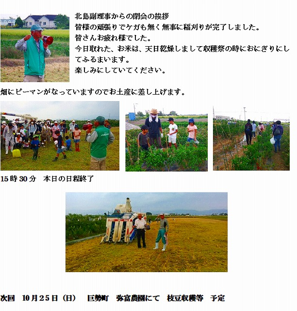 2年10月 稲刈り 3