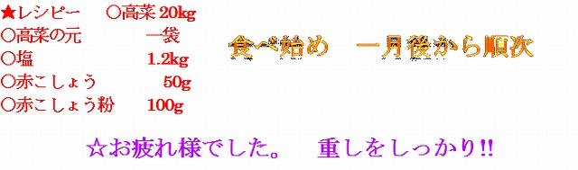 29年4月 高菜漬け 3